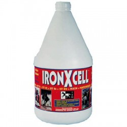 IronXcell 3,75L